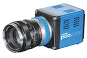 sCMOS Camera: pco.edge 4.2
