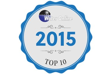 2015 Top 10 Image