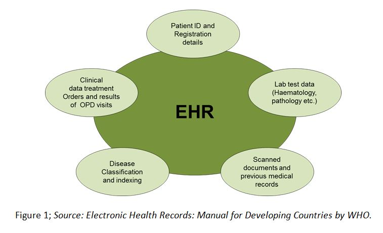 ehr research paper