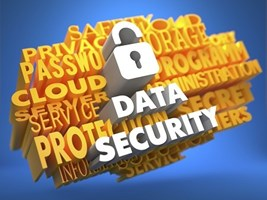 One-Quarter Of Organizations Do Not Encrypt Sensitive Data
