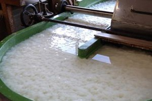 Pulp And Paper Manufacturer Significantly Increases Production While Complying With Discharge Limitations