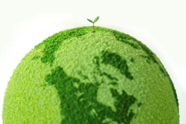 Green Barcoding