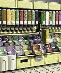& Bulk Food Storage and Dispensing System