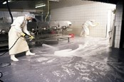 Hygienic Equipment Design Is Essential To Food Safety