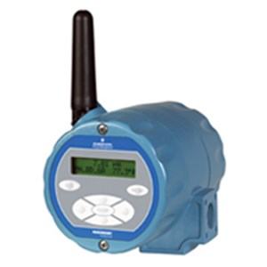 Wireless Communication: Model 6081 Wireless pH Transmitter