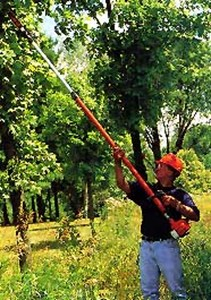 Power Pruner