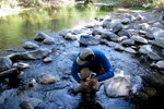 Water Quality Tests Focus On Health Of Aquatic Life