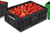 Is There Risk From Using Reusable Plastic Containers In Food Processing?