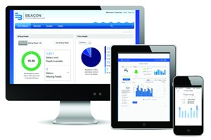 BEACON® Advanced Metering Analytics (AMA)<br> Managed Solution