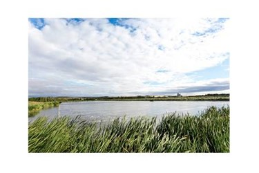 Dawson-Creek-water-lagoons