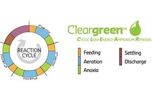 Cleargreen™