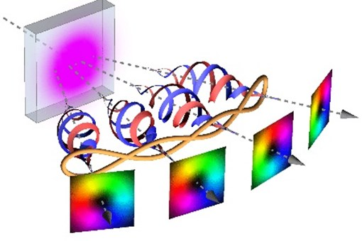 Four Photons Entangled In Orbital Angular Momentum