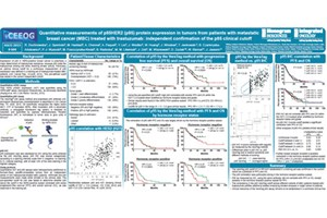 Quantitative Measurements Of p95 Protein Expression In Tumors From Patients With Metastatic Breast Cancer Treated With Trastuzumab