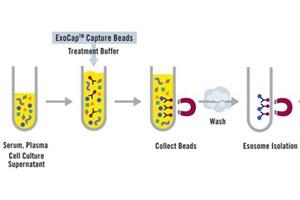 Exome Isolation Kit: ExoCap™