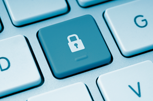 Securing Public Sector Documents Via Viewing Technology