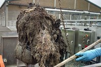 How The Industry Can Take On Wipes In The Waste Stream – And Win: Part 2