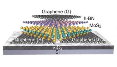 Ali-Javey-2D-field-effect-transistors