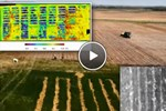 Using Thermography In Precision Agriculture