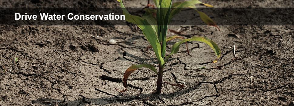 Sensus Logic™ MDM Drives Water Conservation