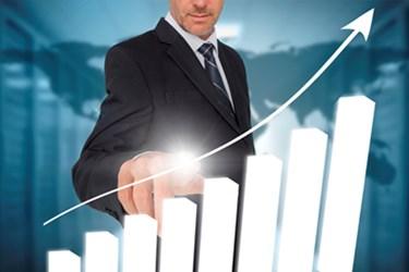 Business Partner Program Elements