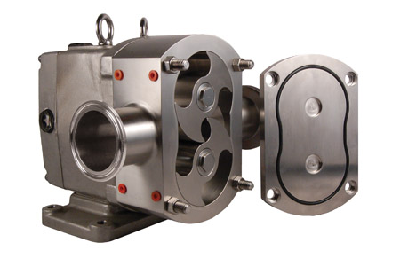 Rotary displacement pump