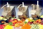 FC250 Food Processor