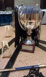 2013 ASCII Cup Winner