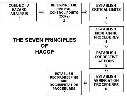 The haccp seven principles