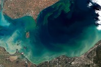 Cyanotoxins Have Met Their Match