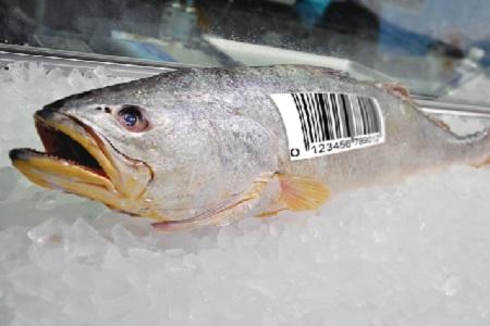 Oceana рассказала о высоком уровне мошенничества на рынке морепродуктов в Дании