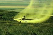 Agent Orange In Food Production Is On The Cusp Of Deregulation