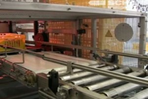 Automated Processes Improve Throughput At Food Plants
