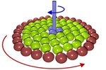 Transmission Of Torque At Small Scales: The Nanoclutch