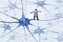 Google's Calico Enters R&D Partnership To Tackle Brain Disorders
