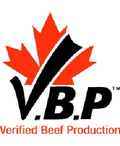 Canada's VBP Raises The Bar For Beef Safety & Traceability