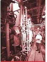 Risk Management/ Industrial Process Safety