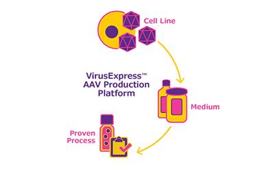 VirusExpress_AAV_Diagram_R8-01