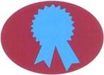 Safety Award Program