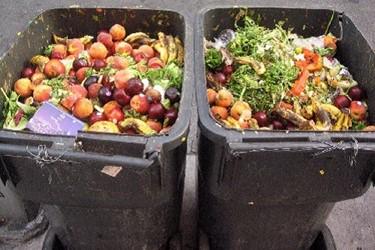 Food Waste Garbage Cans