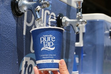 Filling up Louisville pure tap cup1