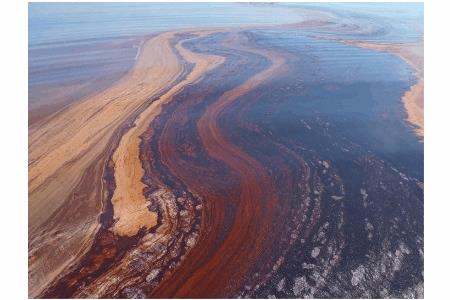 Are There Nature Microbes That Eat Oil