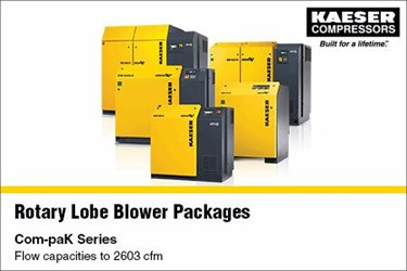 Rotary Lobe Blowers And Packages