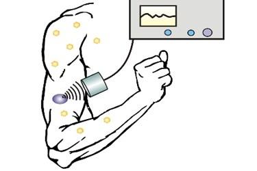 Zhen-Gu_Ultrasound