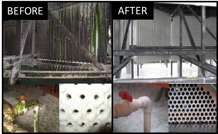 Miox Cooling Tower Disinfection Boosts Power Plant