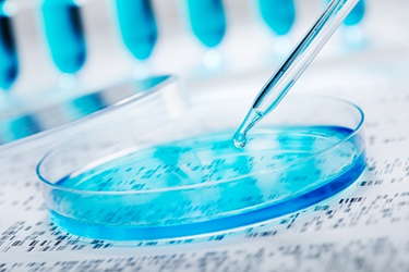 bioprocess petri dish pipetting cell cutlutre 450x300