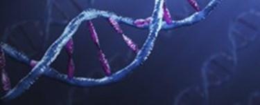 gI_59150_DNA.jpg