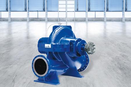 RDLO Split Case Pump