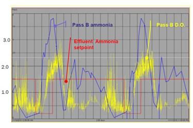 PassBammonia