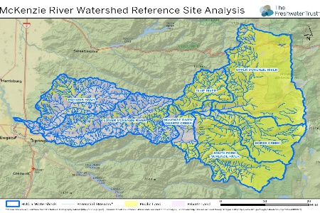 Oregon Utilities Launch River Enhancement Projects In