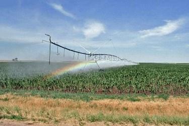 irrigation-sprinkler-large (1).jpg